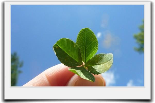 運が悪いと嘆く前に「強運」を味方につける5つの方法