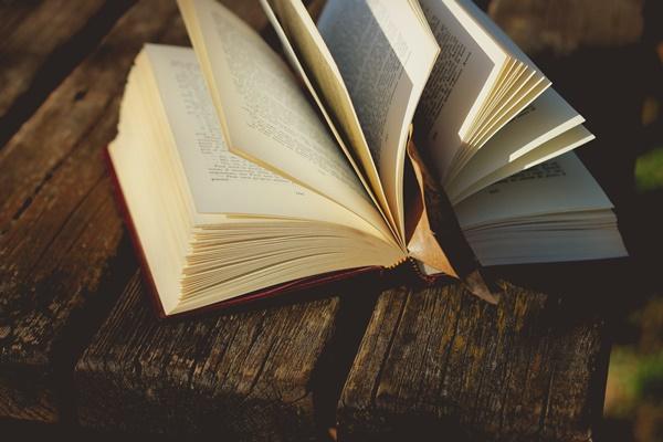 【必読】潜在意識を分かりやすく解説した書籍が面白かった